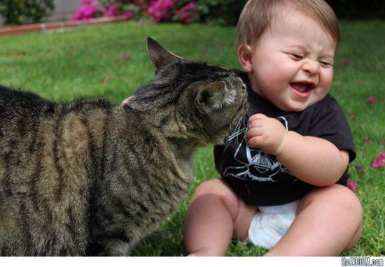 Cách đơn giản nhất cha mẹ có thể làm để cải thiện chỉ số EQ ở trẻ em là cho trẻ tiếp xúc với những con vật nuôi và để trẻ tự khám phá thế giới bên ngoài.